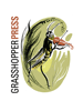 grasshopperpress-home